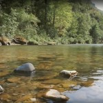 Miniature Video « Aveyron pêcher vrai »